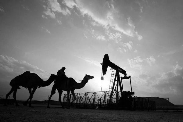 Reason behind Official Saudi Silence towards Bahraini Oil Discovery